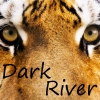 Dark-River - joueur Tropicstory